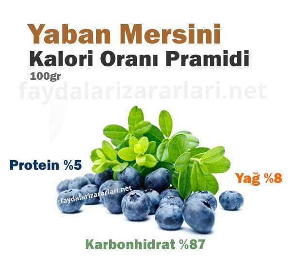 Yaban Mersini Kalori