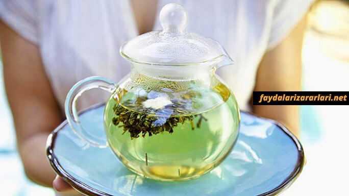 Yeşil Çayın Faydası
