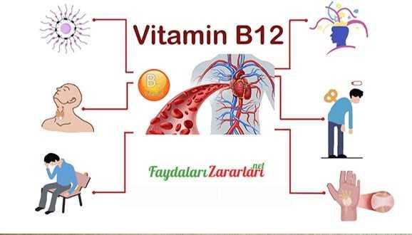 B12 Vitamin Eksikliği Belirtileri?