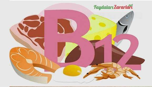 B12 İçeren Besinler